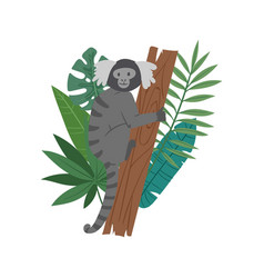 monkey animal on tropical tree with palm monstera vector image