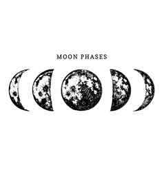 Moon phases image on white background hand drawn vector
