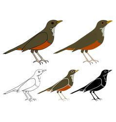 Sabia laranjeira bird in profile view vector