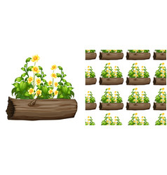 seamless background design with flowers on log vector image
