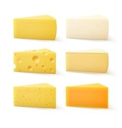 Set of cheese cheddar bri parmesan camembert vector