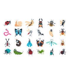 cartoon funny insects colorful cute bugs vector image