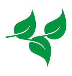 leaves icon eco and bio logo vector image