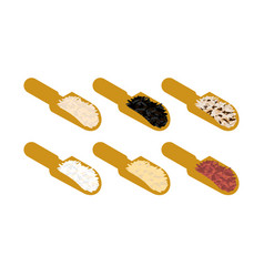 Rice set in wooden scoop parboiled and brown vector