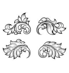 Vintage baroque scroll leaf set in engraving style vector