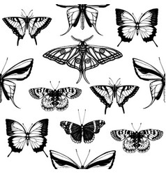 backdrop with high detailed insects sketches hand vector image