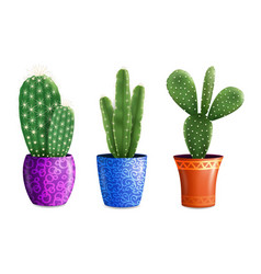 Cactus houseplants in pots vector