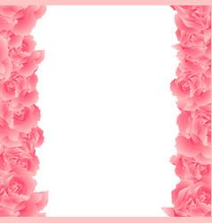 Pink carnation flower border vector