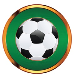 Soccer Ball Icon2 vector image