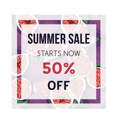 Summer sale banner with figs fruit design vector