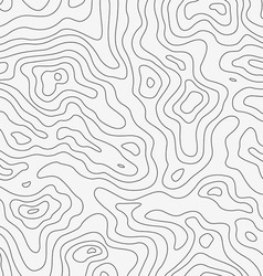 Topographic Map Seamless Pattern vector image