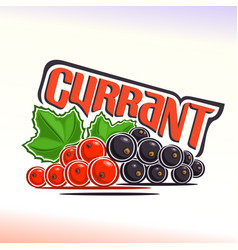 currant still life vector image vector image