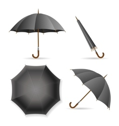 Black Umbrella Template Set vector image