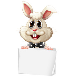 Blank sign template with happy bunny on white vector