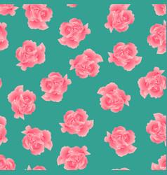 dianthus caryophyllus - pink carnation flower on vector image
