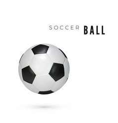 soccer ball with shadow leather ball isolated on vector image