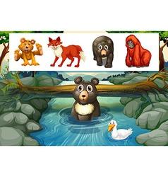 Wild animals in forest vector