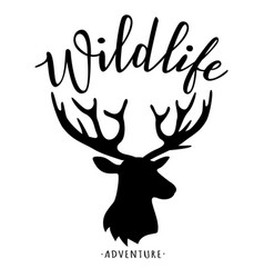 wildlife lettering vector image