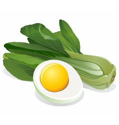 cabbage salad with sliced egg vector image vector image