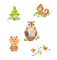 cute forest animals and birds vector image vector image