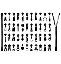 Set of different zippers vector image vector image