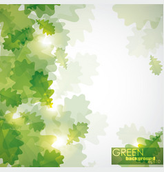 Abstract shiny background with green oak leaves vector