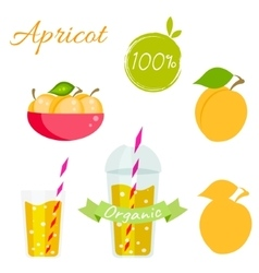 Apricot fruit and juice set vector image