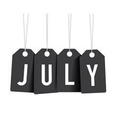 black july tags vector image