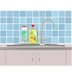 Household cleaning products advertising vector