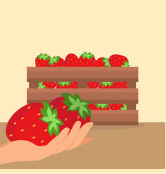 strawberries in wooden box vector image