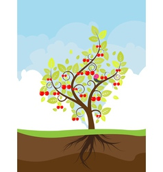 Stylized Cherry Tree vector image