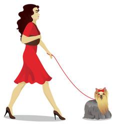 Girls is walking yorkshire terrier vector