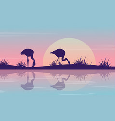 silhouette of flamingo on riverbank at sunrise vector image vector image