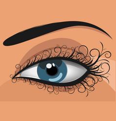 woman blue eye vector image vector image