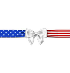 american bow with stars and stripes in us colors vector image