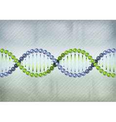 dna green blue lines vector image