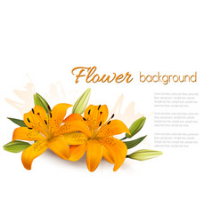 flower background with beautiful lilies vector image