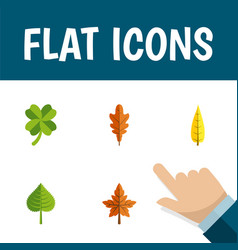 Icon flat leaf set of leaf foliage frond and vector