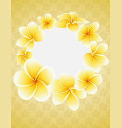 plumeria blossom flowers around round frame vector image