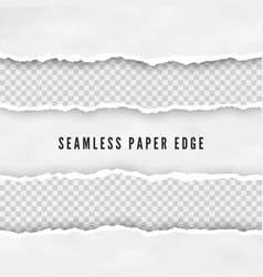 set torn seamless paper borders abstract paper vector image