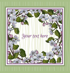 template design with apple blossom vector image