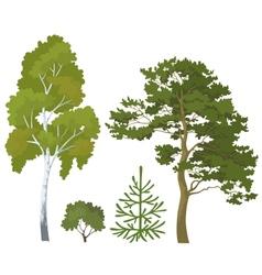 Forest plants set vector image