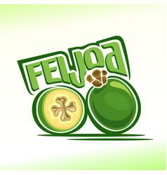 logo for feijoa vector image