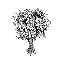 bouquet of flowers black and white sketch vector image