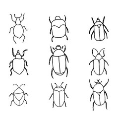 Cute hand drawn bugs outlines vector