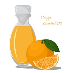 Essential oil of orange vector image