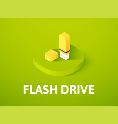 Flash drive isometric icon isolated on color vector