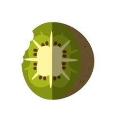 kiwi tropical fruit isolated icon vector image