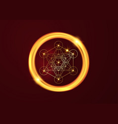 Metatrons cube flower life sacred geometry vector