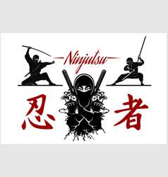 Ninja warrior silhouette of vector